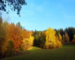 HerbstSilke6